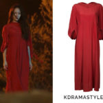 Krystal's Red Dress - Lemaire Soft Dress